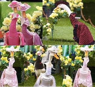 فى إستراليا:900 ألف زائر لمشاهدة عرض أزياء البط