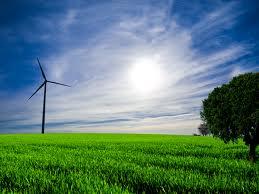 البيئة والتخطيط يبحثان تطبيق -الاقتصاد الأخضر- كآلية لتحقيق التنمية المستدامة