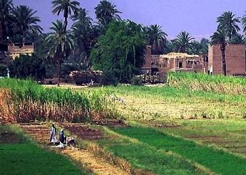 البيئة توقع برتوكول تعاون مع جهاز بناء وتنمية القرية المصرية