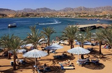 زعزوع: أدعو أصدقائنا الإيطاليين لزيارة مصر ليستمتعوا وينعموا بالأمن والآمان
