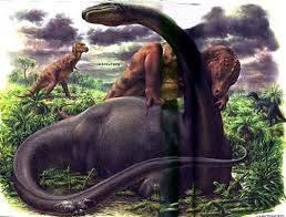 الحياة على الأرض منذ ملايين السنين