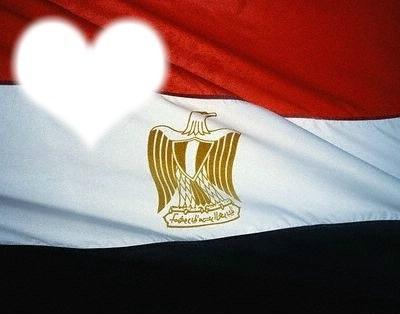 قلب مصر الشاب