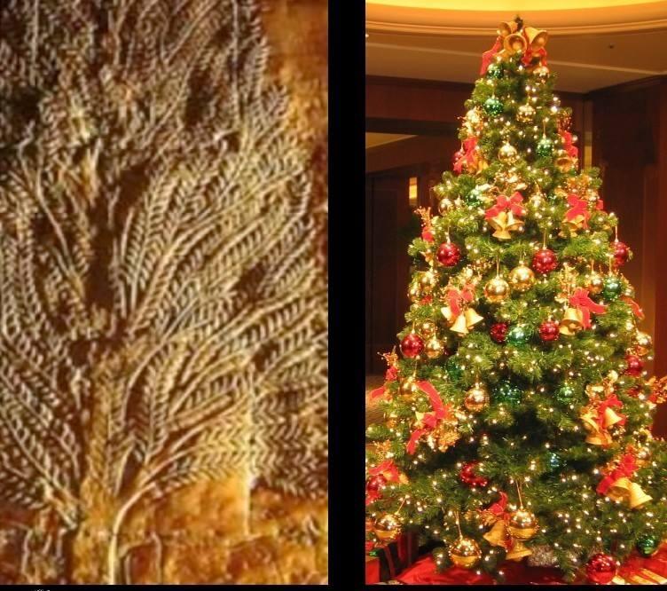 شجرة الكريسماس و الحضارة المصرية القديمة