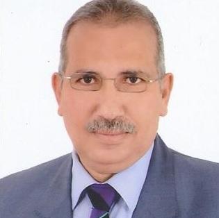 الجرائم الالكترونية في الوطن العربي