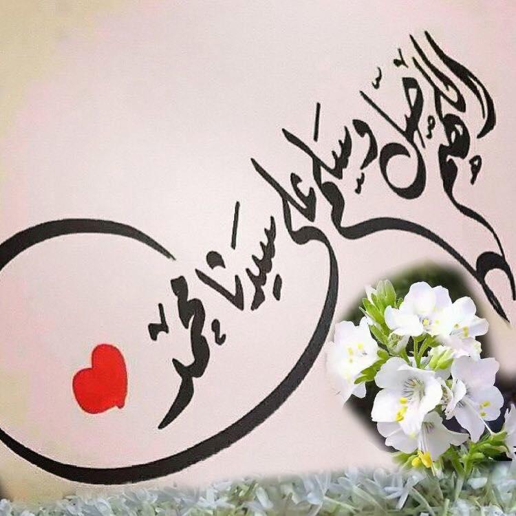 أم النبي «زهرة قريش»