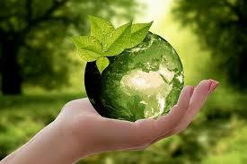 مصر تحتفل بيوم البيئة العربى ٢٠٢٠ على منصات التواصل الاجتماعى