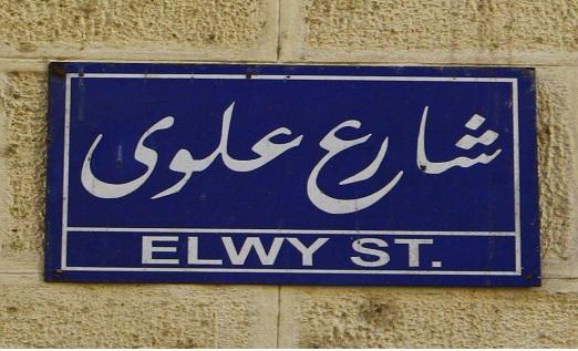 شارع علوى