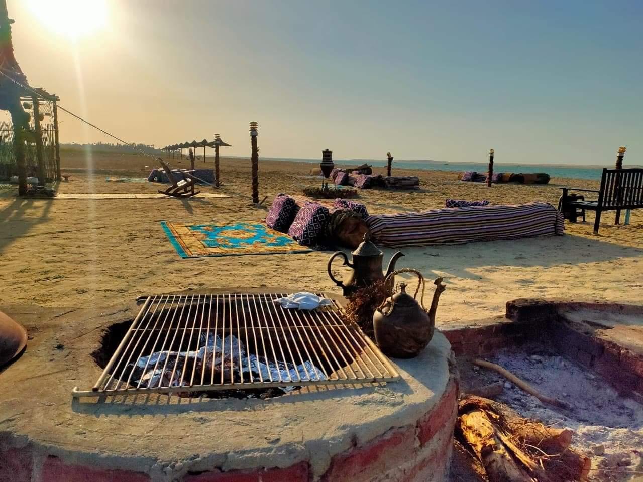 وزيرة البيئة تطمئن المواطنين : شواطئ السواحل المصرية الشمالية أمنه من حوادث هجوم أسماك القرش ...  وترفع حالة الاستعداد للرصد والمراقبة