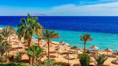 80 ألف سعودي زاروا مصر في شهر أغسطس فقط